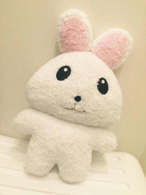 【手工缝制大白兔,超可爱…】-无类目--猫尾草儿