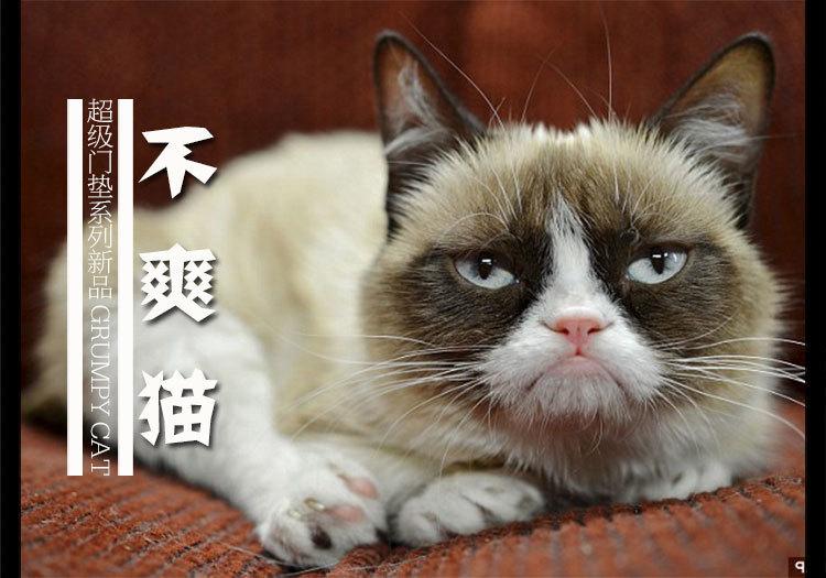 商品描述 网络明星猫咪——不爽猫;黑色底耐脏;改良涤纶毯面,可水洗