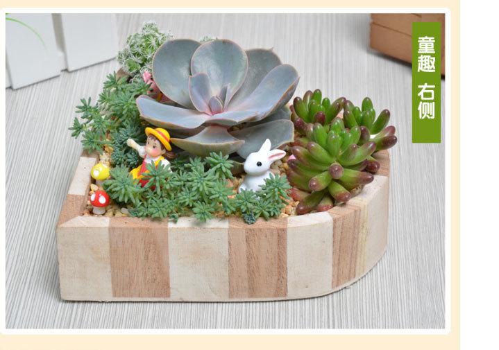 【微景观多肉植物组合盆栽套装】-家居-绿植/盆栽